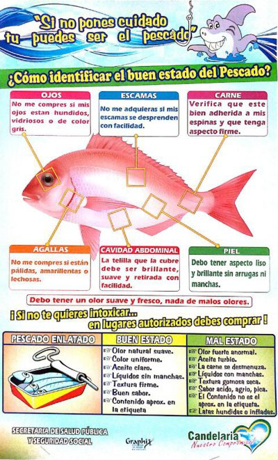 Cómo identificar el buen estado del pescado