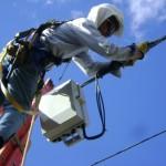 Árbol en la red eléctrica generó la suspensión del servicio de energía en ocho veredas del occidente de Popayán, actualmente el servicio se presta con normalidad