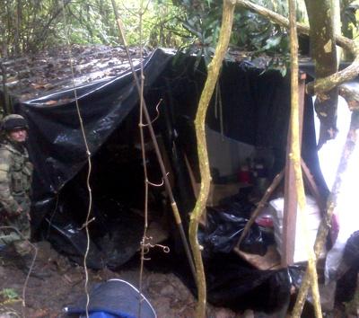 Destruyen dos complejos cocaleros en el norte del Cauca