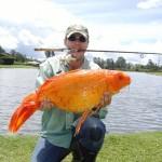 Pesca deportiva en Santander de Quilichao