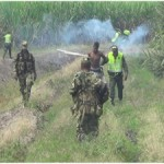 Detienen a 4 integrantes de la pandilla Los Pumas, en Puerto Tejada