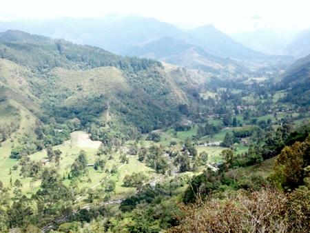 Valle del Cocora cruzado por el Río Quindío desde el Mirador de Salento