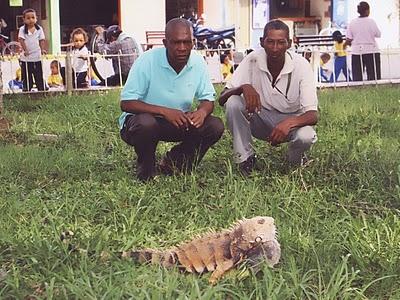 parque iguanas 2