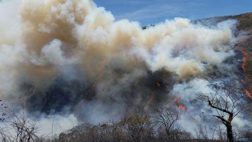 Incendio forestal 6