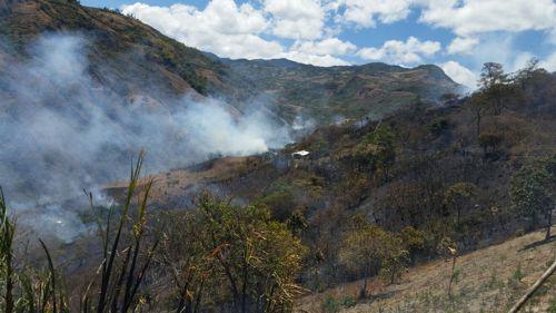 Incendio forestal 7