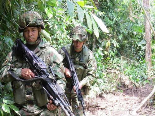 Continúa ofensiva contra el narcotráfico en el sur del país - Ejército Nacional