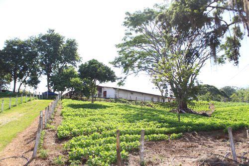 Centro de Armonización Gualanday