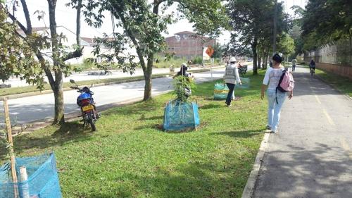 Auditoría ambiental a obras de Movilidad Futura S.A.S. en Popayán1
