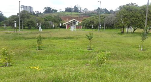 Auditoría ambiental a obras de Movilidad Futura S.A.S. en Popayán2