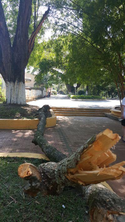 Parque Bolívar 2