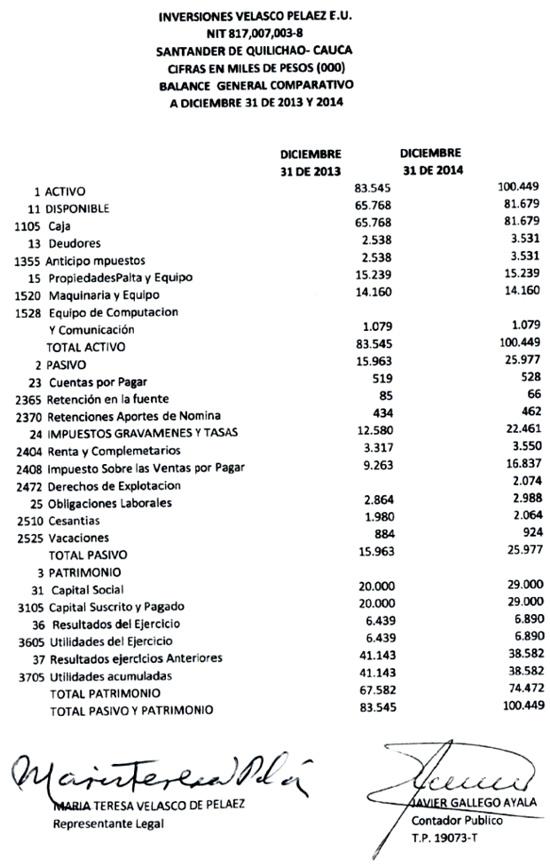 Inversiones Velasco Peláez - Balance General
