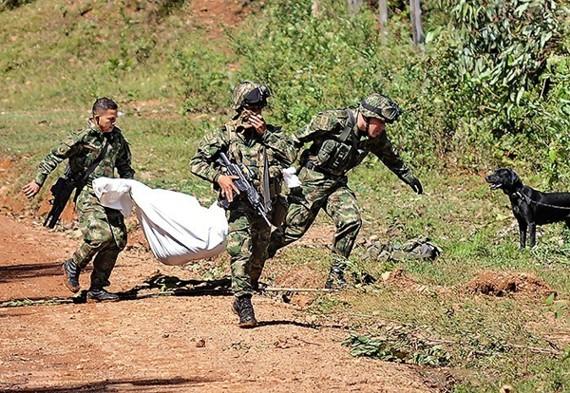 Pliego de cargos contra oficiales del Ejército por masacre de las Farc en Buenos Aires