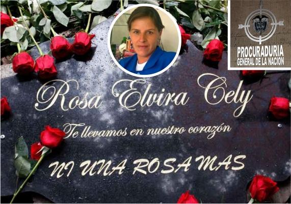 Rosa Elvira Cely - Procuraduría