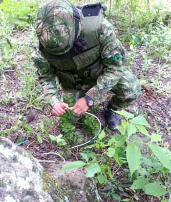 Destruyen artefacto explosivo en el sur del Cauca