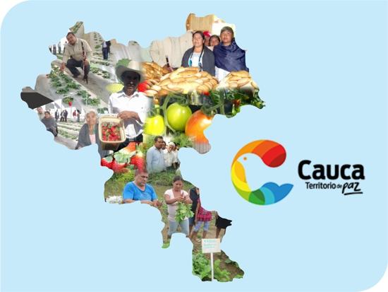 Cauca territorio de paz - Proyectos productivos