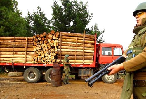 Robo de madera en Cauca