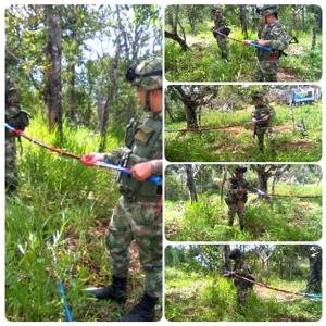 Destruyen minas antipersonales en Suárez, Cauca1