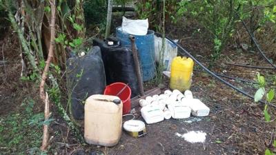 Destruyen laboratorio de coca en Almaguer, Cauca