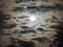 luna-de-manana-negruzca