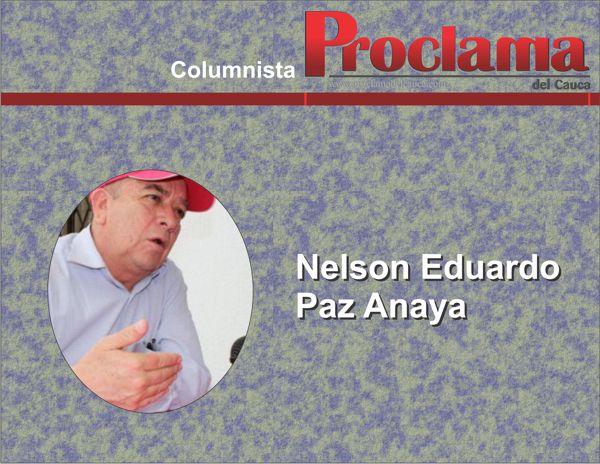 NELSON EDUARDO PAZ ANAYA