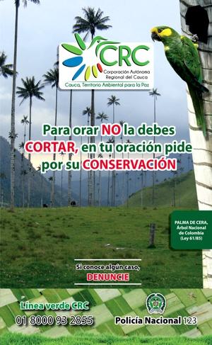 CRC - Protejamos la palma de cera