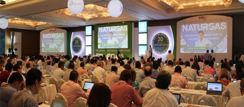 XX Congreso de Naturgas
