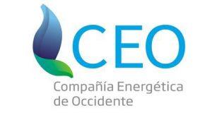 CEO 3