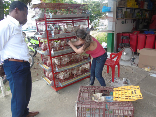 Entrega de capital semilla a jóvenes de Villa Rica