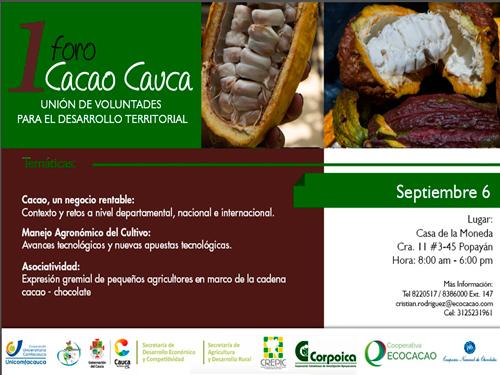 En foro de cacao, el Cauca conocerá las potencialidades de este producto en el departamento