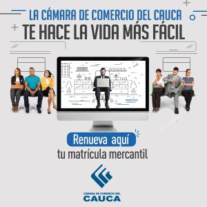 Renovación Mercantil 20178 - CCCauca