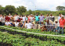 Inauguran Vivero Paraíso en Santander de Quilichao