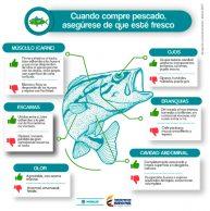 Prevenga enfermedades por consumo de pescados y mariscos
