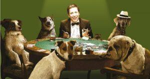 Entre perros, traders y humanos nos entendemos