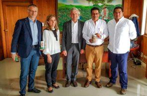 Café del Cauca, es el cultivo de la Paz