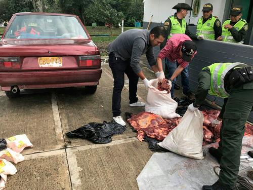 Carne de caballo se iba a distribuir en Popayán