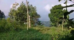Norte del Cauca sigue bajo fuego