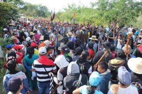 El Cauca no sale de la anarquía de las protestas