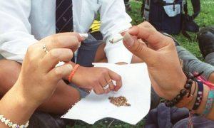 Capturados por vender droga a estudiantes