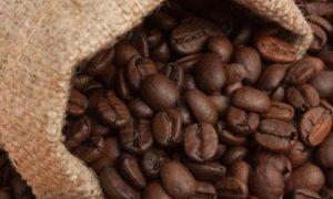 Cafés del Cauca fueron premiados