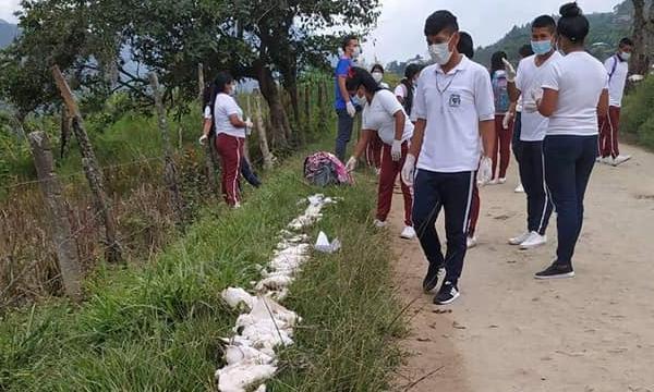 Ecocidio en Toribío