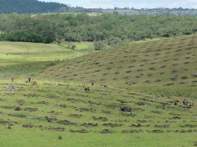 En defensa del norte del Cauca
