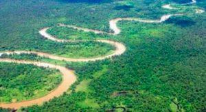 ¡Amazonas-amazonas