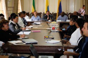 Consejo-Territorial-de-Reincorporación-del-Cauca-espacio-para-la-construcción-de-paz.
