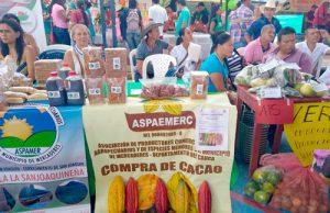 Estrategias para el desarrollo local en el Cauca