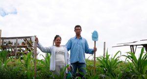 Emprendimientos juveniles rurales, aportan a la construcción de región