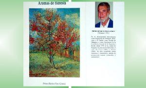 AROMAS DE FLORESTA