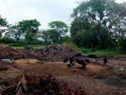 Empresas de Cali y Popayán arrojan sus residuos en Quintero