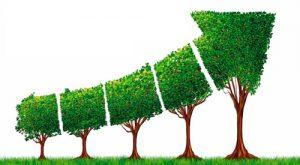 La ecología como eje en los planes de desarrollo