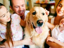 Mascotas no transmiten Coronavirus
