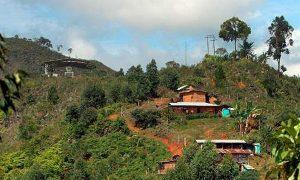 Continúa masacre gota a gota en el Cauca
